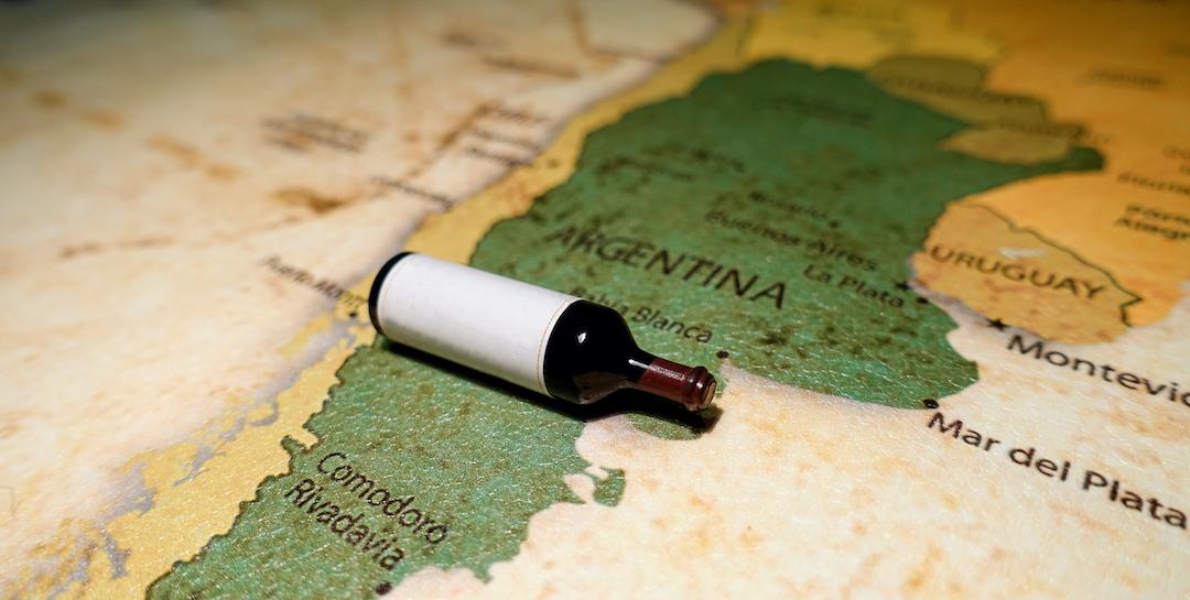 wino ze szczepu bonarda